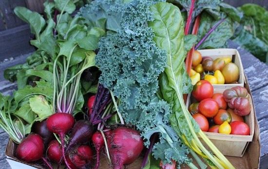 organic-vegetables 1